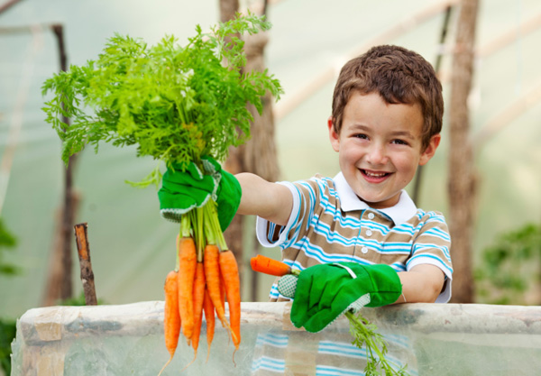 Winter Gardening Ideas With Kids