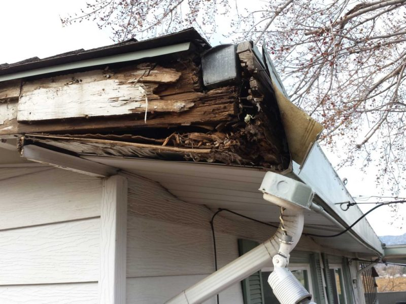 Consequences of Not Cleaning Your Gutters