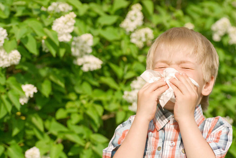 How To Have A Low-Allergen Garden