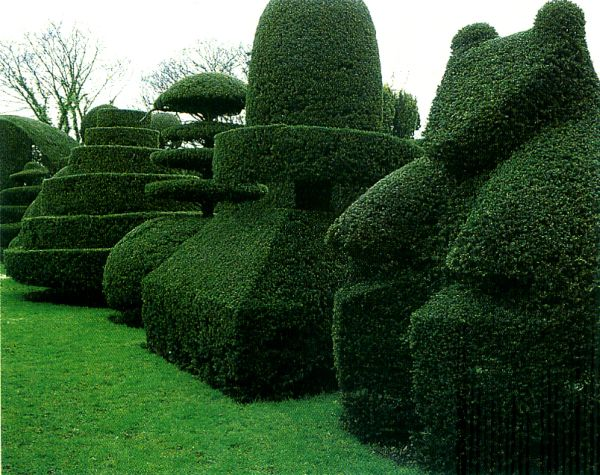 6 Unique Hedge Design Ideas