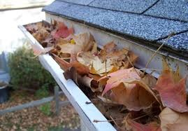 How clean are your gutters?